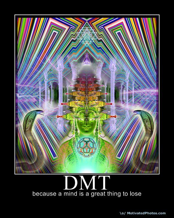 Dimethyltryptamine  DMT Dmt Trip Visuals