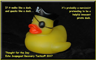 Echo Scapegoat Recovery Tactics© Thought for the Day Quote - If it looks like a duck, and quacks like a duck, it's probably a narcissist pretending to be a helpful innocent pirate duck.