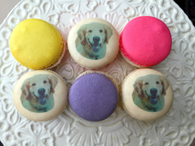 national dog day Nadege patisserie macaron