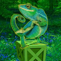 Games2rule Wild Chameleon Forest Escape