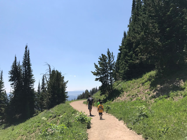 Hiking down Mt. Washburn trail