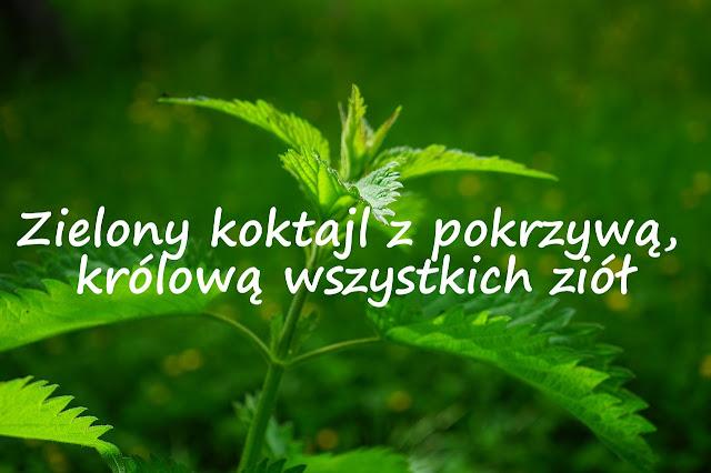http://zielonekoktajle.blogspot.com/2017/03/zielony-koktajl-z-pokrzywa-krolowa.html