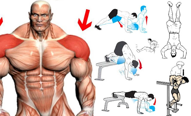 Best Bodyweight Shoulder Exercises