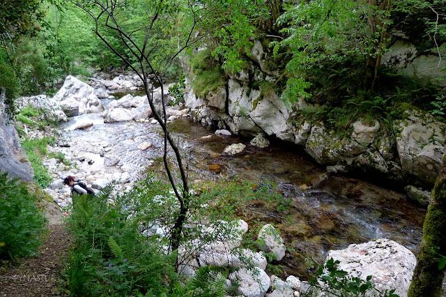 La Foz del Río Ponga