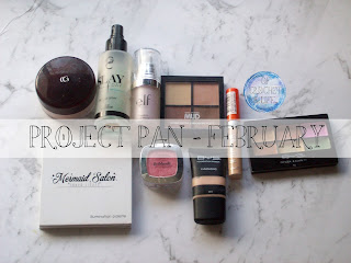 Project Pan #3 February