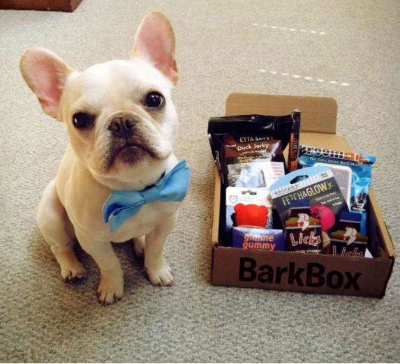BarkBox Monthly Dog Box