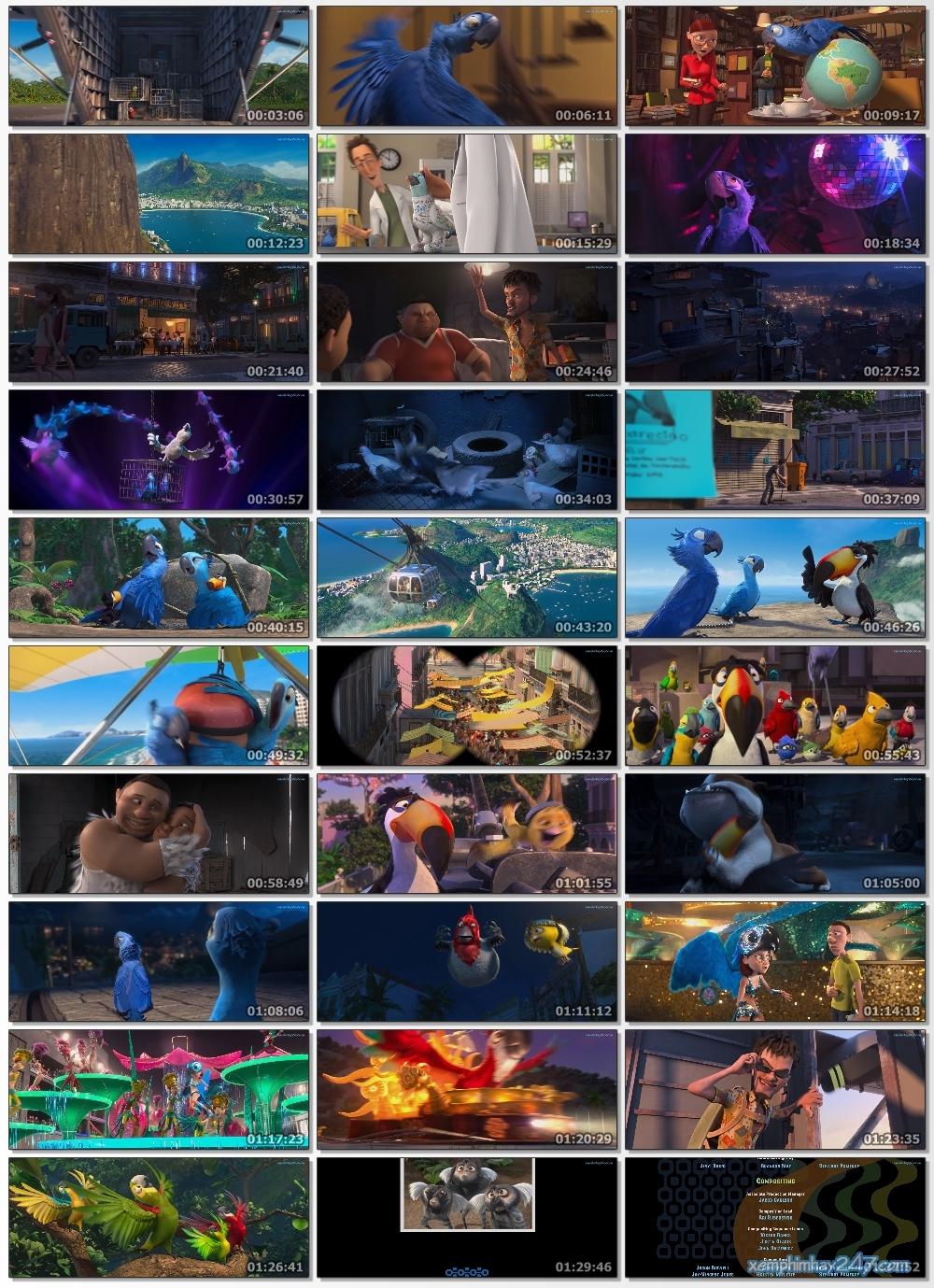 http://xemphimhay247.com - Xem phim hay 247 - Vẹt Đuôi Dài (2011) - Rio (2011)
