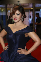 Payal Ghosh aka Harika in Dark Blue Deep Neck Sleeveless Gown at 64th Jio Filmfare Awards South 2017 ~  Exclusive 090.JPG