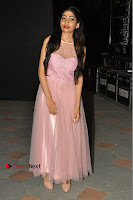 Actress Nidhisha Reddy Pos in Beautiful Pink Dress at Virus Telugu Movie Audio Launch .COM 0045.JPG
