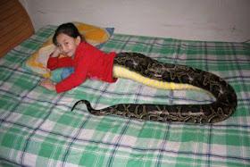 Half snake half girl