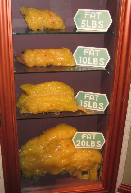 Ten Pounds Of Fat 7