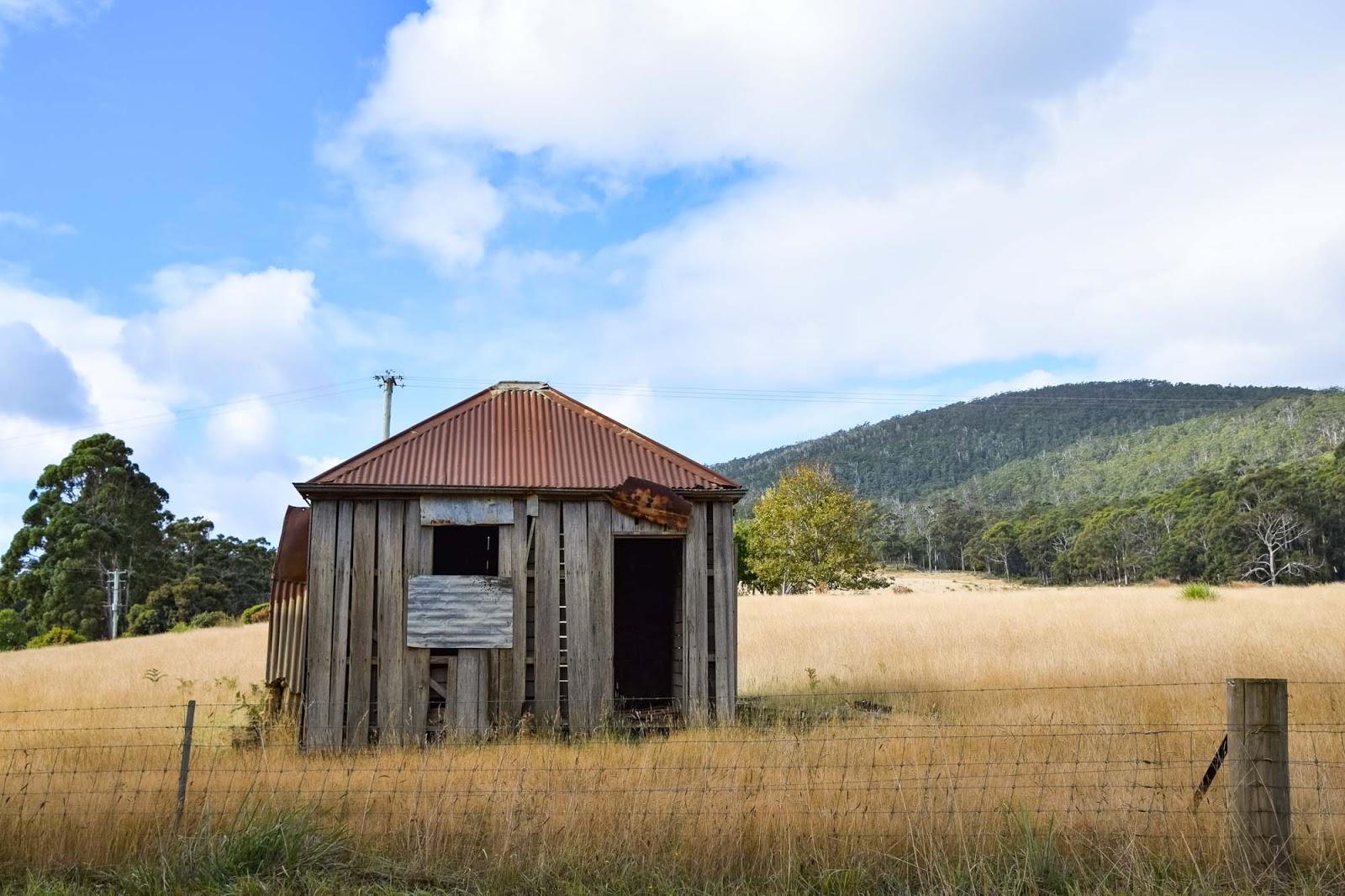 shack on bruny island