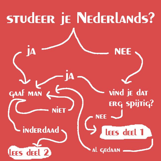 Studeer je Nederlands?