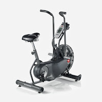 Schwinn AD6 Airdyne Bike, top best air fan exercise bikes compared