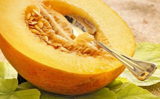 Mengenal Manfaat Kesehatan Rock Melon