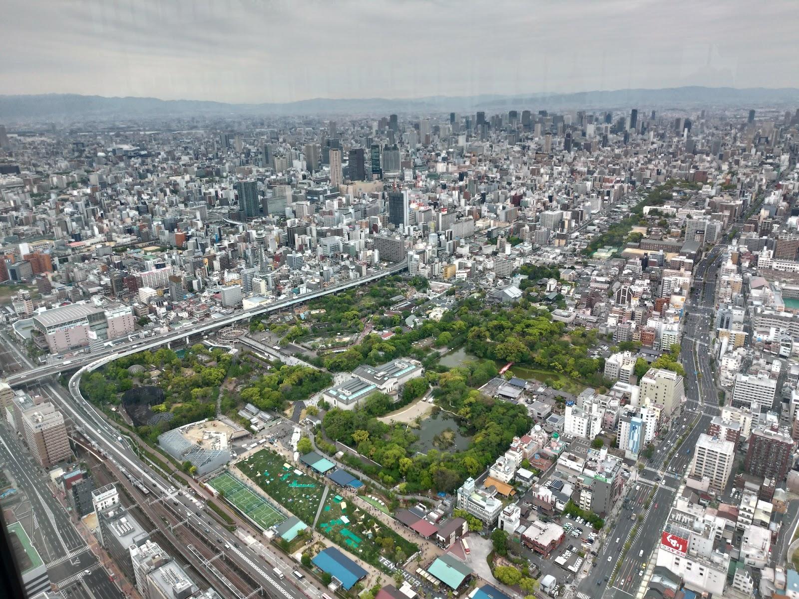 緑が、天王寺動物園とその奥に通天閣が見えます!