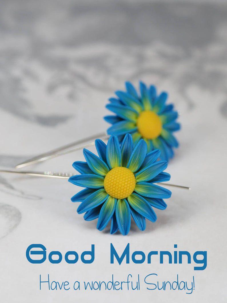 good morning flower image