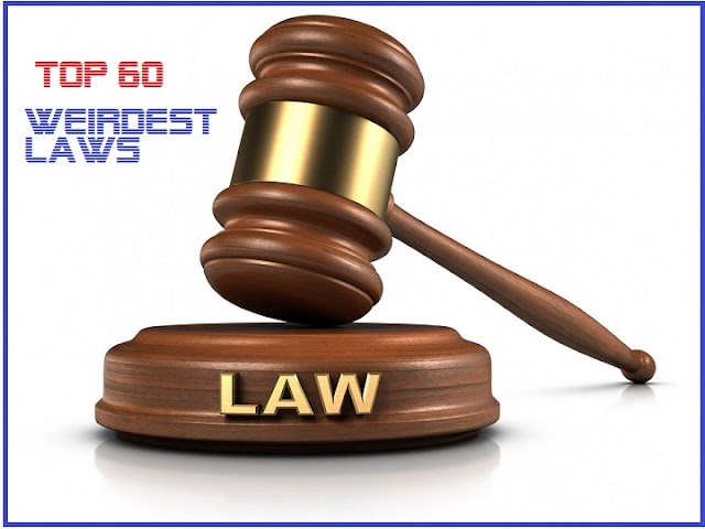 Top 60 Weirdest Laws in the World.