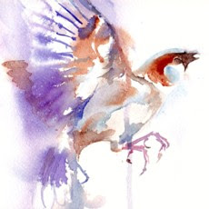 Judy Barends Watercolour Art