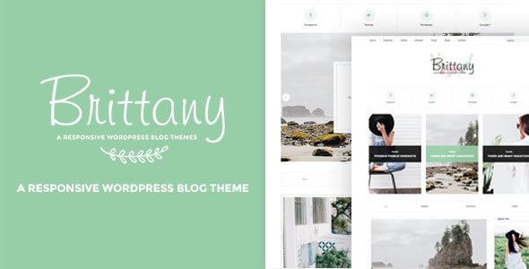 Brittany Wordpress Theme Free Download