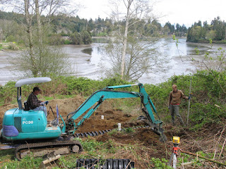 Back hoe digging a hole for a new septic system drain field at the waters edge.
