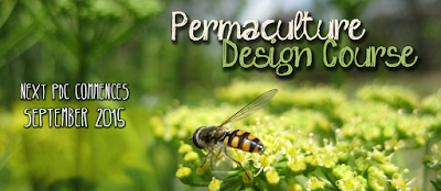 Permaculture, Wildfoods and Herbal Wisdom      : Permaculture Design Course Graduation