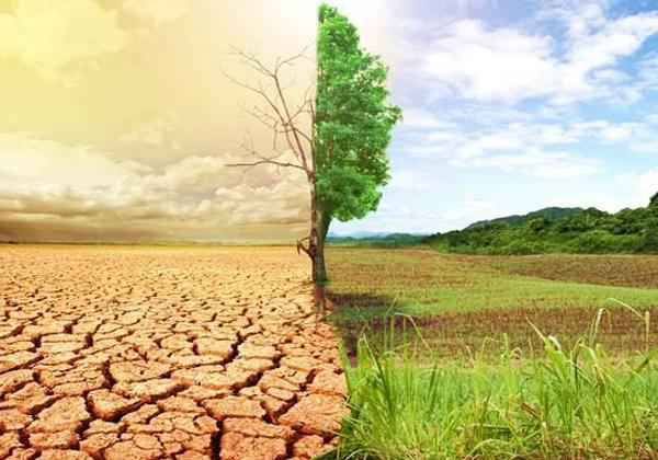 260.000 παραπάνω πρόωροι θάνατοι έως το 2100 λόγω κλιματικής αλλαγής