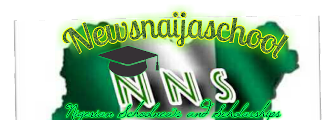 Official Newsnaijaschool logo