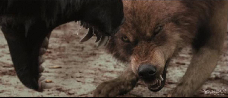 jacob black werewolf transformation - photo #19
