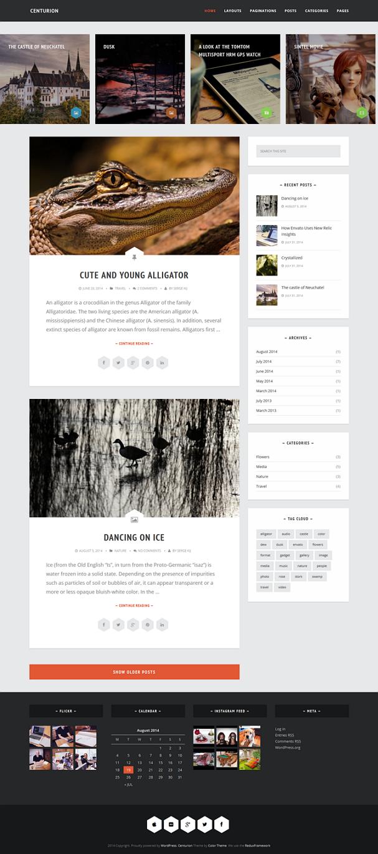 free responsive blog theme