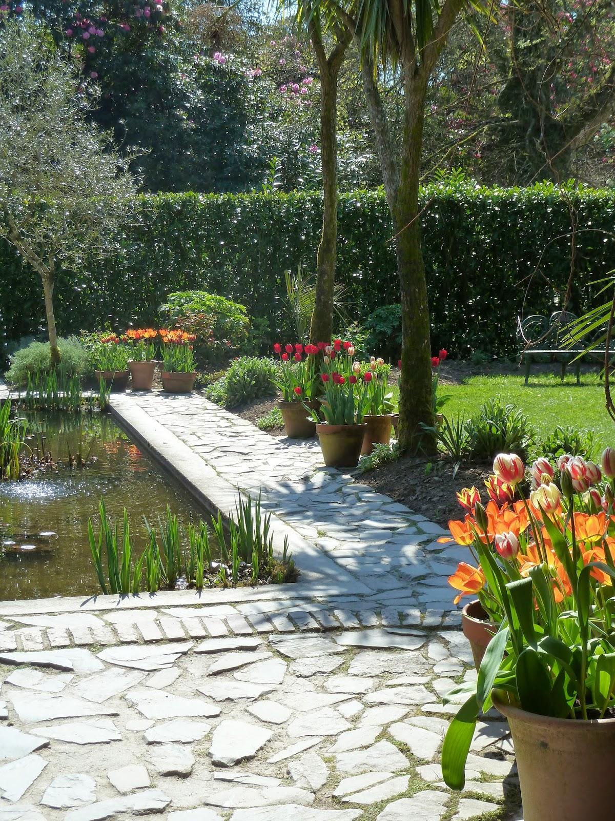 Tulips In The Italian Sunken Garden
