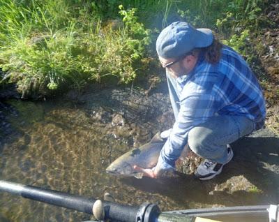 Rogue-river-Oregon-salmon