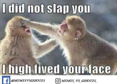 I did not slap your face