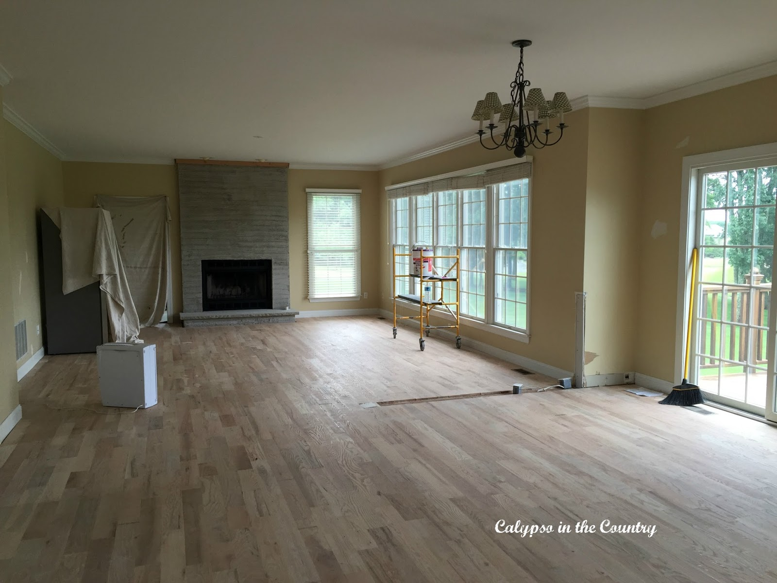 Family Room and fireplace renovation