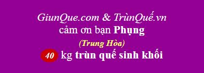 Trùn quế Trung Hòa