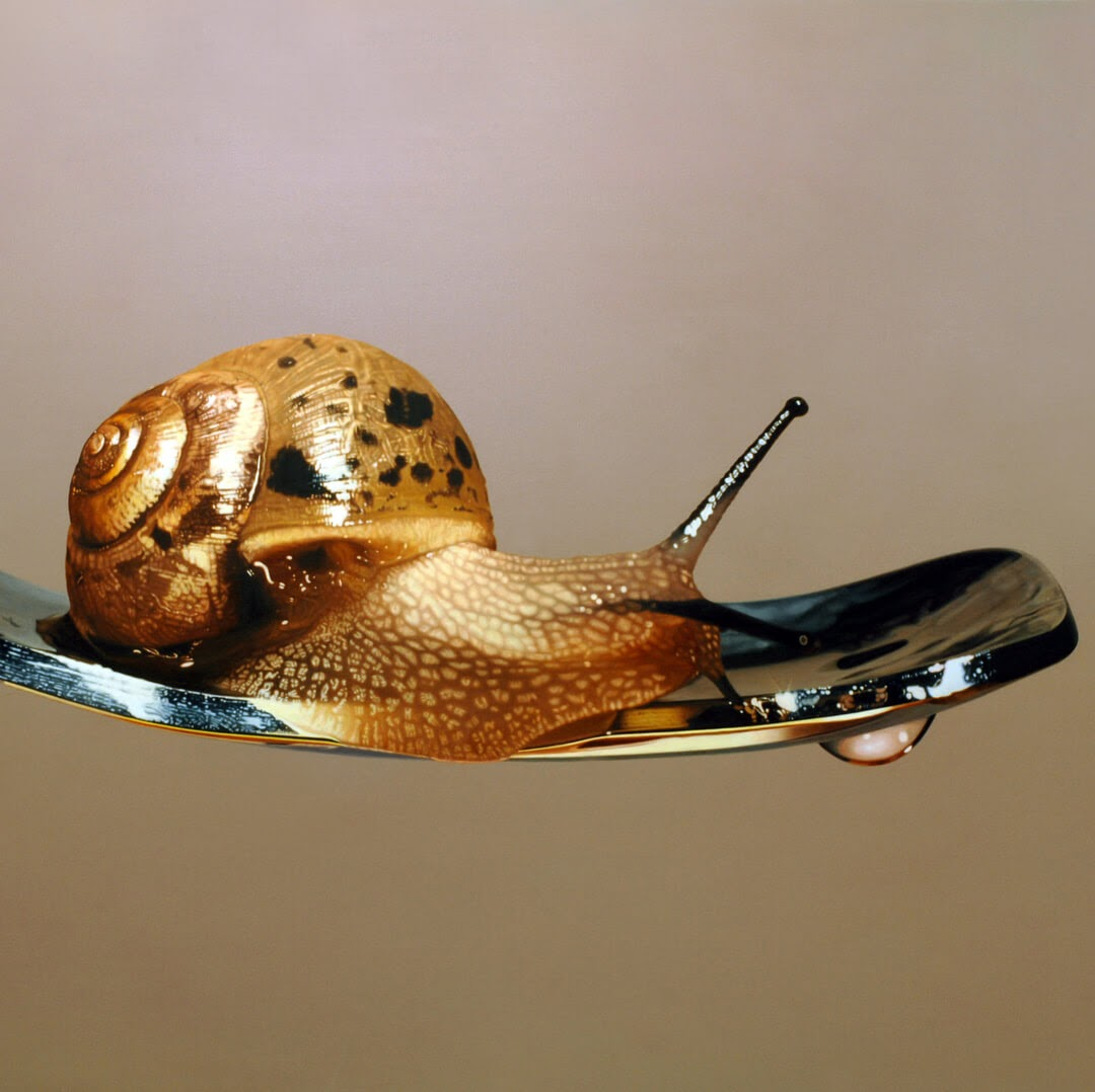 12-Snail-on-a-Spoon-Young-sung-Kim-Realistic-Animal-Oil-Paintings-on-Canvas-www-designstack-co