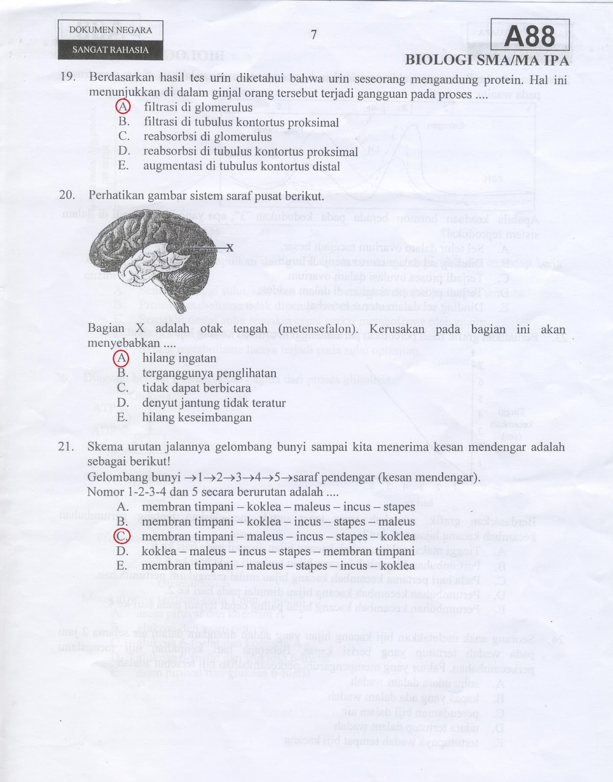 Biologi Gonzaga Prediksi Un Biologi 83