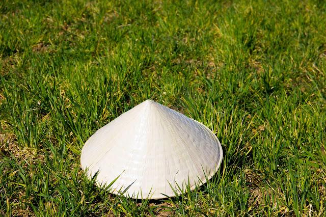 Arrozales y Sombrero Vietnamita