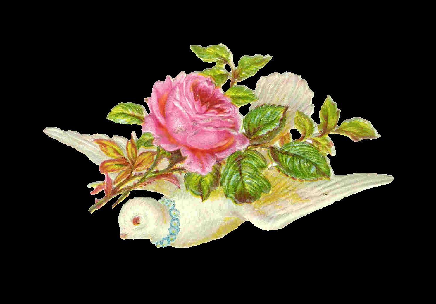 free funeral flower clip art - photo #37