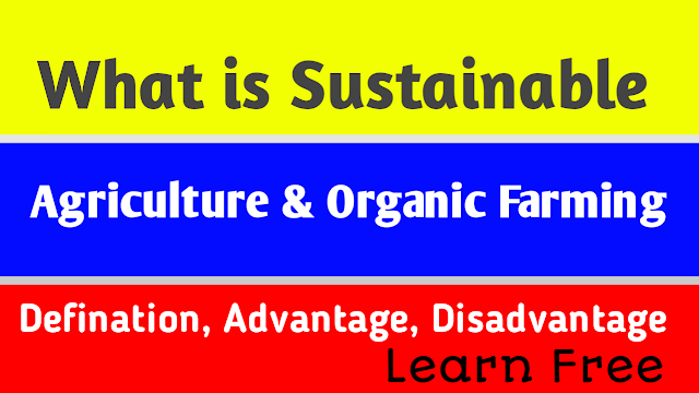 What is Sustainable agriculture and Organic Farming:- Defination,Advantages,Disadvantages