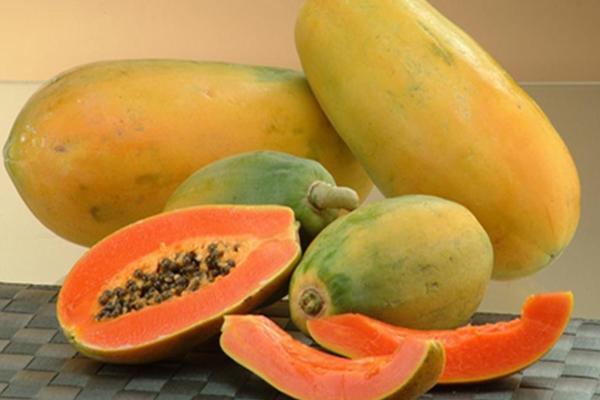 Kandungan Gizi Nutrisi Pepaya Dan ManfaatBuah Pepaya Untuk Kesehatan