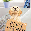 House Trained by Jackie Bouchard - Fido Friendly Fiction | Book Review
