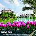 Vinhomes Riverside The Harmony: Tiểu Khu Tulip