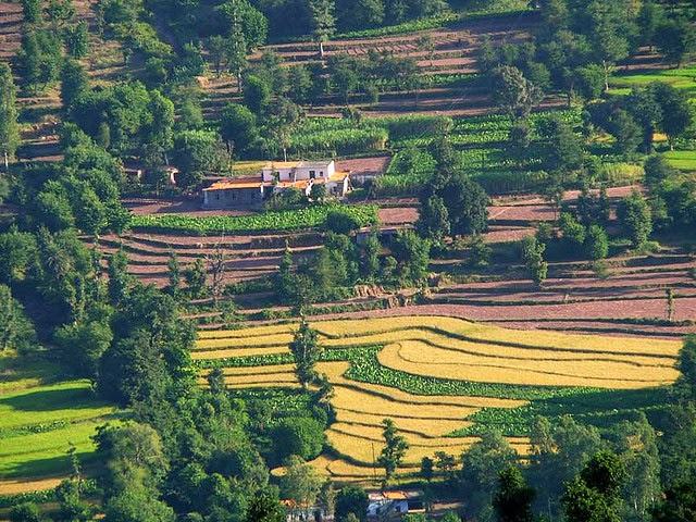 Kasauli in Himachal Pradesh