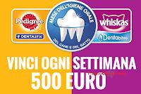 Logo Con Pedigree e Whiskas vinci buoni spesa da 500 euro