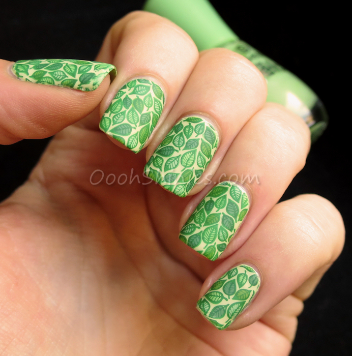 Brazil forest nail