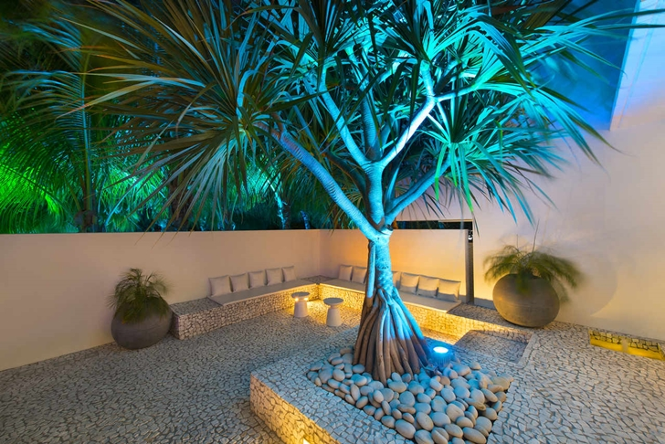 Tree and sitting area at night in Modern mansion in Miami