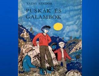 Tatay Sándor Puskák és galambok könyv jellemzés