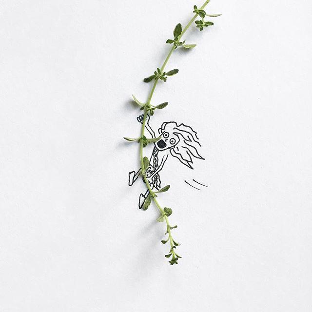 gambar sketsa pulpen yang di gabungkan dengan benda alami yang keren unik dan menarik