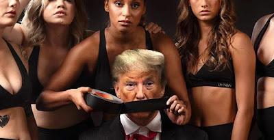دونالد ترامب, شركة ملابس امريكية, تهين ترامب, حملة اعلانية مثيرة للجدل,